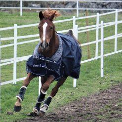 Regntäcket Nova sport Freedom på häst i rörelse