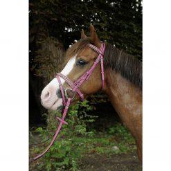 Rosa ponnyträns hkm ponny