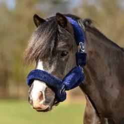 grimma blå på ponny