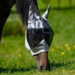 globus flughuva mesh på häst